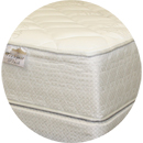 Tranquil Plush Mattress with Box Spring Foundation